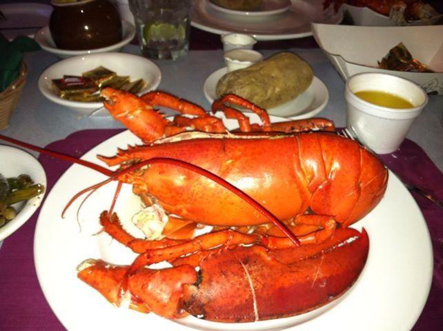 Ogunquit, Maine lobster... best of the best