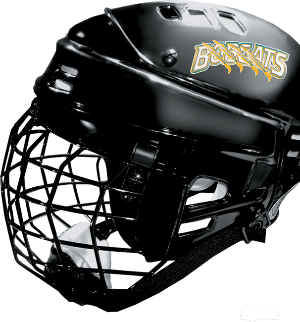 Hockey Helmet Decals Hockey Helmet Helmet Football Helmets