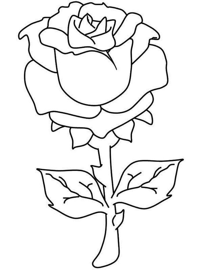rose coloring pages for your little ones  kostenlose