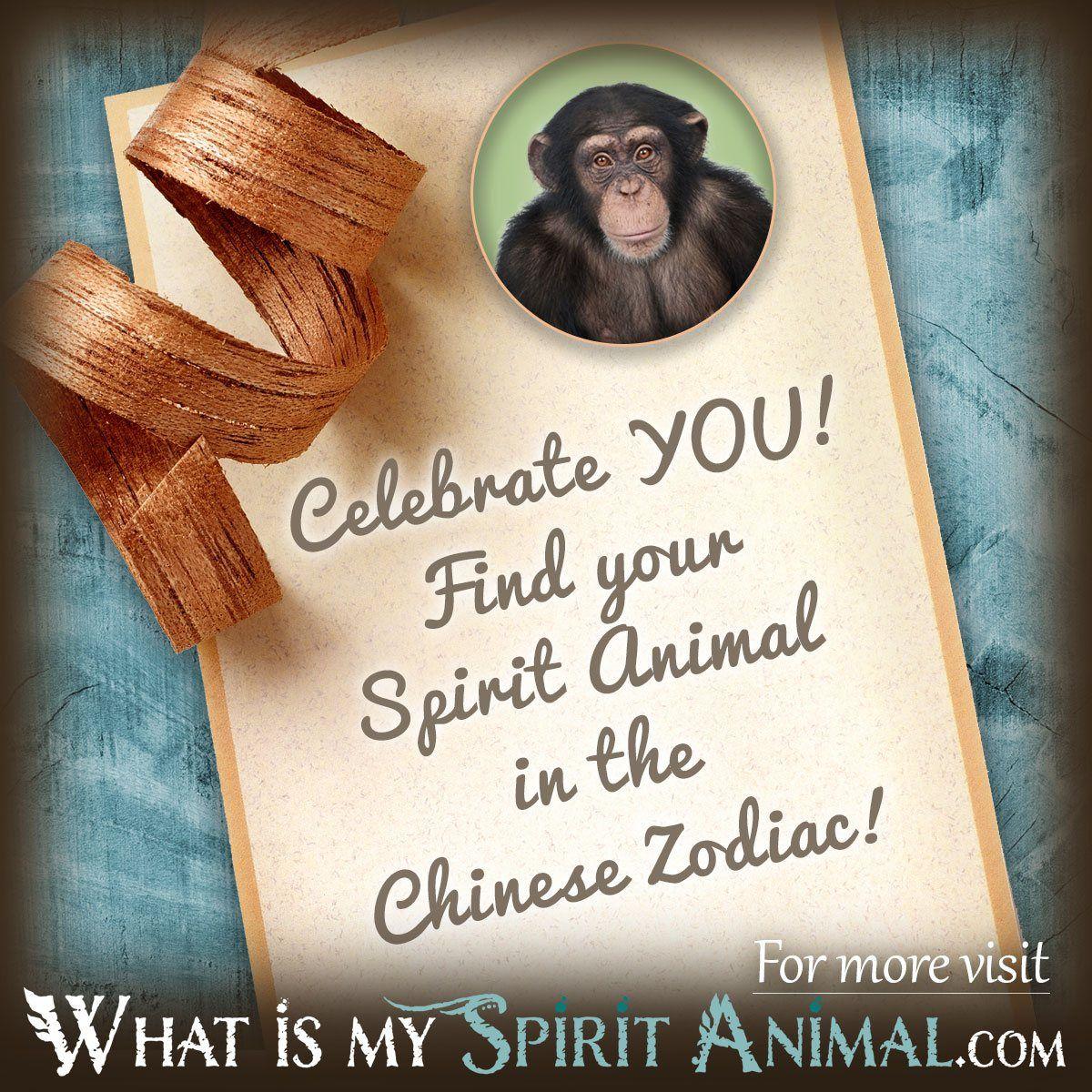 What Is My Spirit Animal by Birthday | Birth animal totem ...