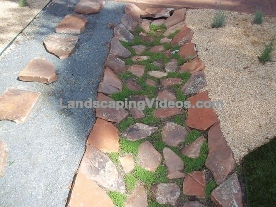Pin By Chris On Fire Pit Mulch Landscaping Ideas Diy Home Landscaping Landscape Drainage