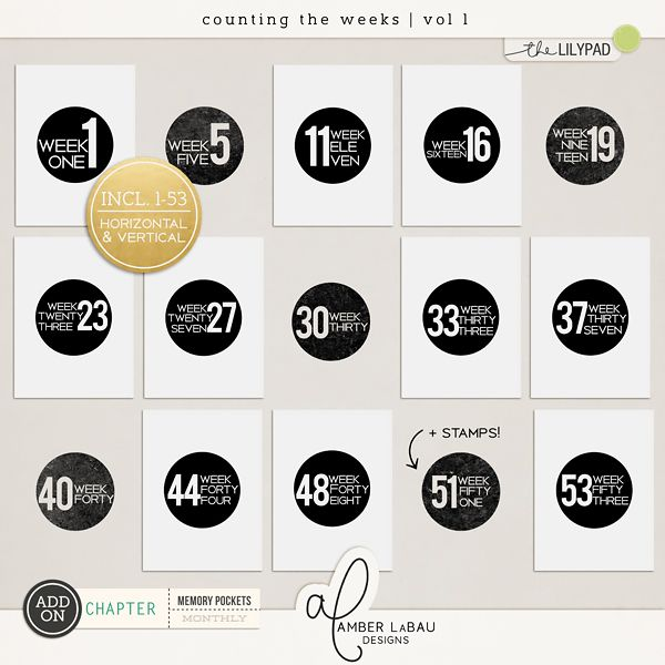 COUNTING THE WEEKS VOL 1 | by Amber LaBau Contains: 53 cards sized 3x4 in both orientations w/ and w/o bleed