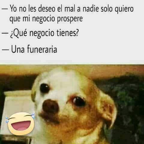 Imagenes Divertidas Para Enviar O Compartir Por Whatsapp Mexicans Be Like Humor Funny Gif