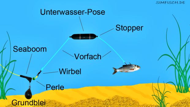 Angeln mit Unterwasserpose | Angeln, Wels angeln, Unterwasser