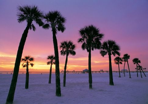 Clearwater Florida One Of My Favorite Beaches Magical At Sunset I Miss The Sunsets Warm Water And Palm Trees