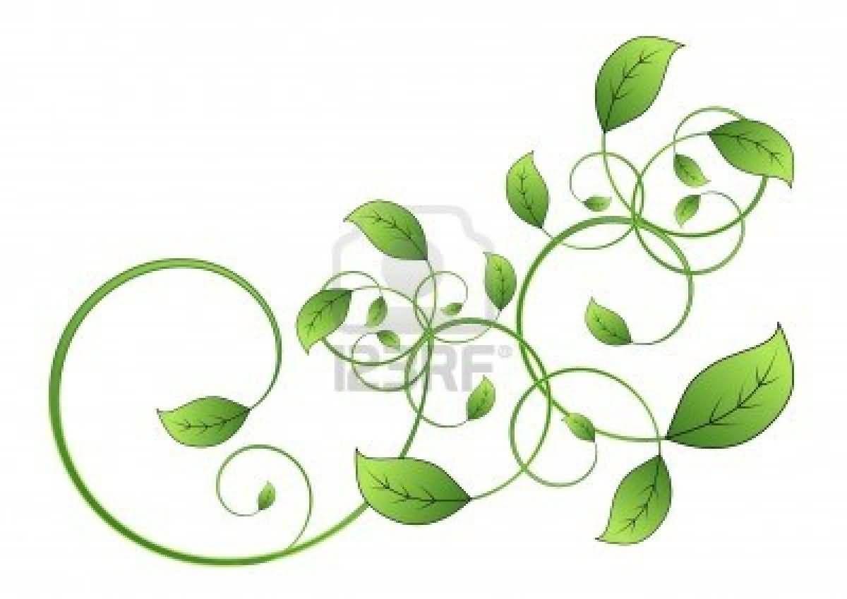 celtic vine leaf tattoo 1200 849 undercut pinterest. Black Bedroom Furniture Sets. Home Design Ideas