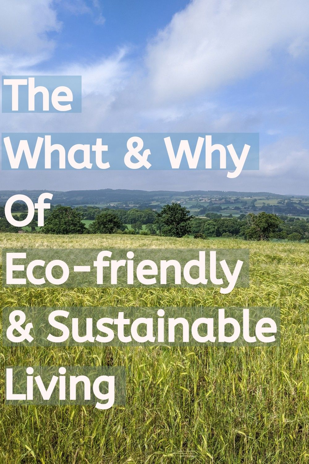 The words often get thrown around, so what do they really mean and why is this lifestyle important? #ecofriendly #ecofriendlyliving #sustainable #sustainableliving