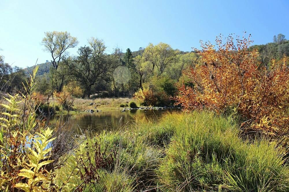 """What are you grateful for? """"I am so grateful that I have numerous peaceful places to walk whether I have a short time or long time available."""" - Lisa Hooper  #15DaysofGratitude #SaveLand #DonateToLandConservation #BearYubaLandTrust Learn more: www.bylt.org"""