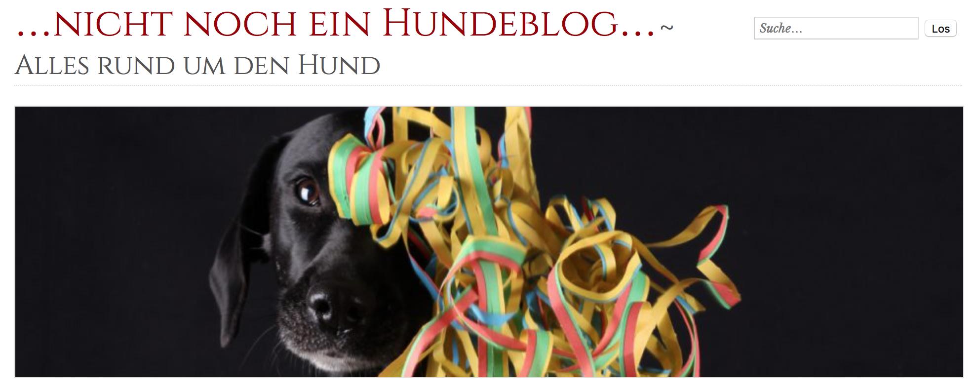 Dürfen Hunde In Ikea
