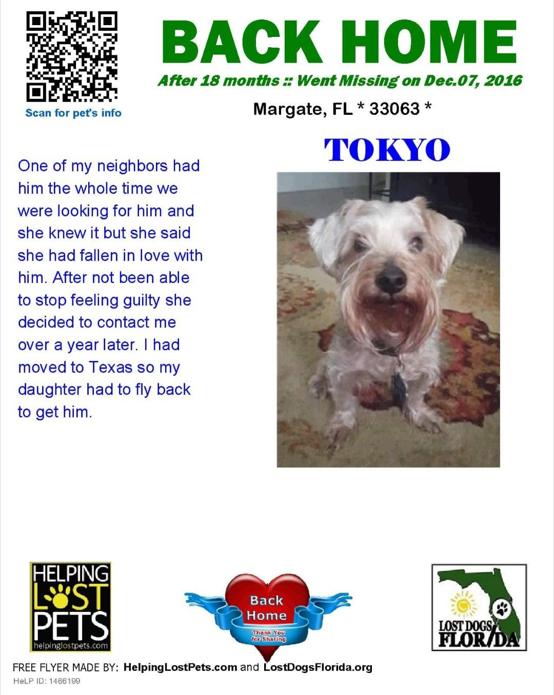 We Are Glad Tokyo Has Made It Home To His Family If You Find A Lost Dog Please Do Everything You Can To Ge Losing A Dog Losing A Pet Falling