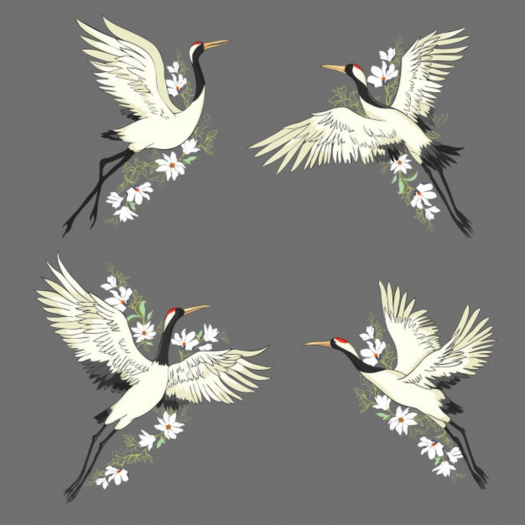 Crane A Bird In Flight Set Paid Paid Sponsored Bird Flight Set Crane In 2020 Bird Graphic Bird Drawings Bird Illustration