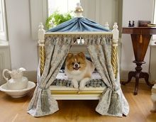 Luxury Versailles Pagoda Pet Bed$5998.00 yes let me just run out and buy 2. This dog bed costs more than my own bed how ridiculous.