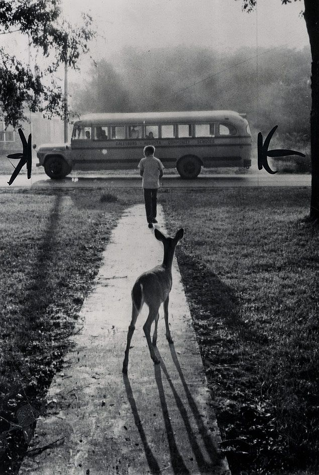 Off to School  1960-10-26  Fawns by ?