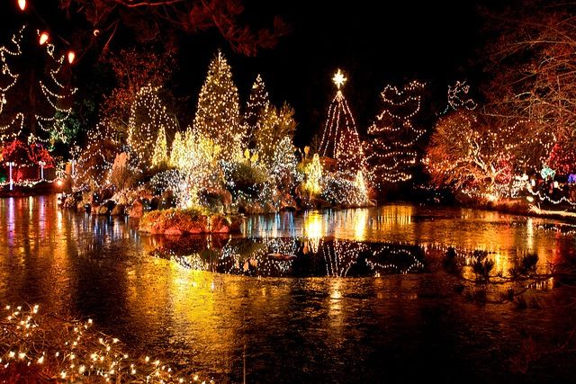 590c07a1aff62f85d5bdb5c7841c0742 - Van Dusen Botanical Gardens Christmas Lights