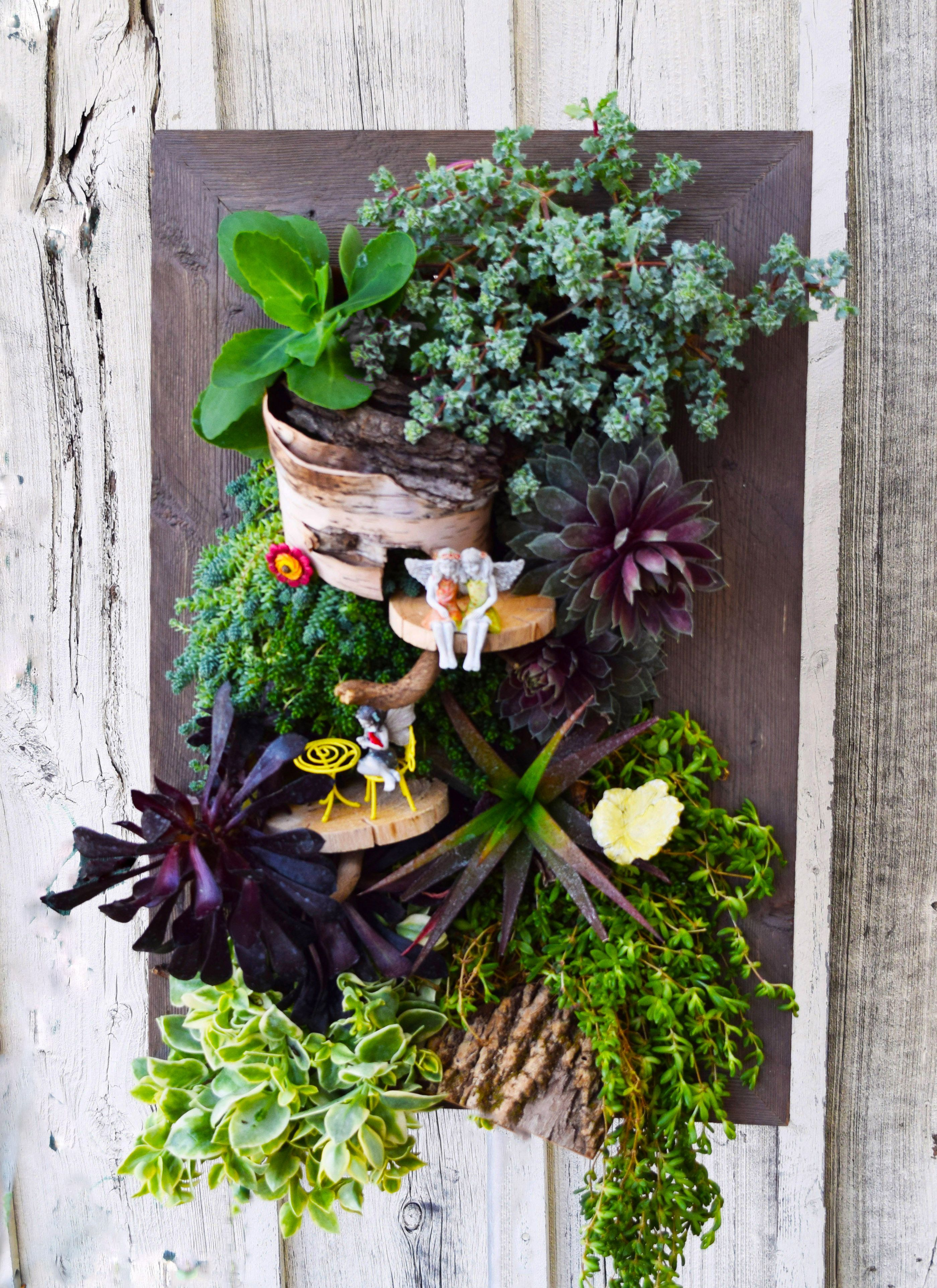 Enjoy Your Fairy Garden Year Round With A Grovert Living Wall