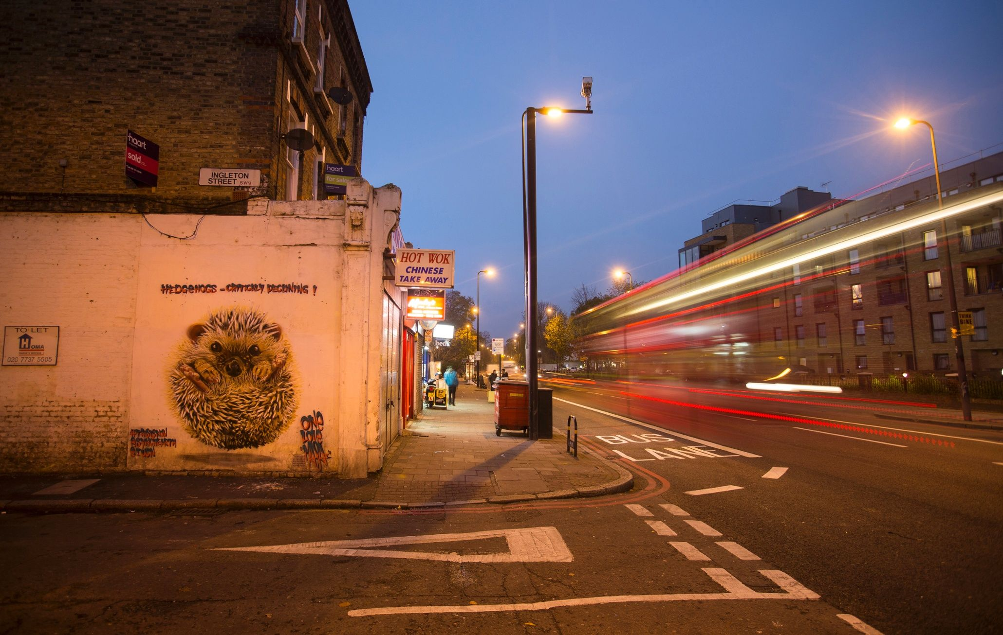 Hedgehog by Brixton Road at night Photograph: Toby Madden/Synchronicity Earth Street artist Louis Masaai's London murals, including a hedgehog, stag beetle and house sparrow, highlight species loss within the UK. The campaign, in conjunction with charity Synchronicity Earth, marks the IUCN Red List's 50th anniversary this year