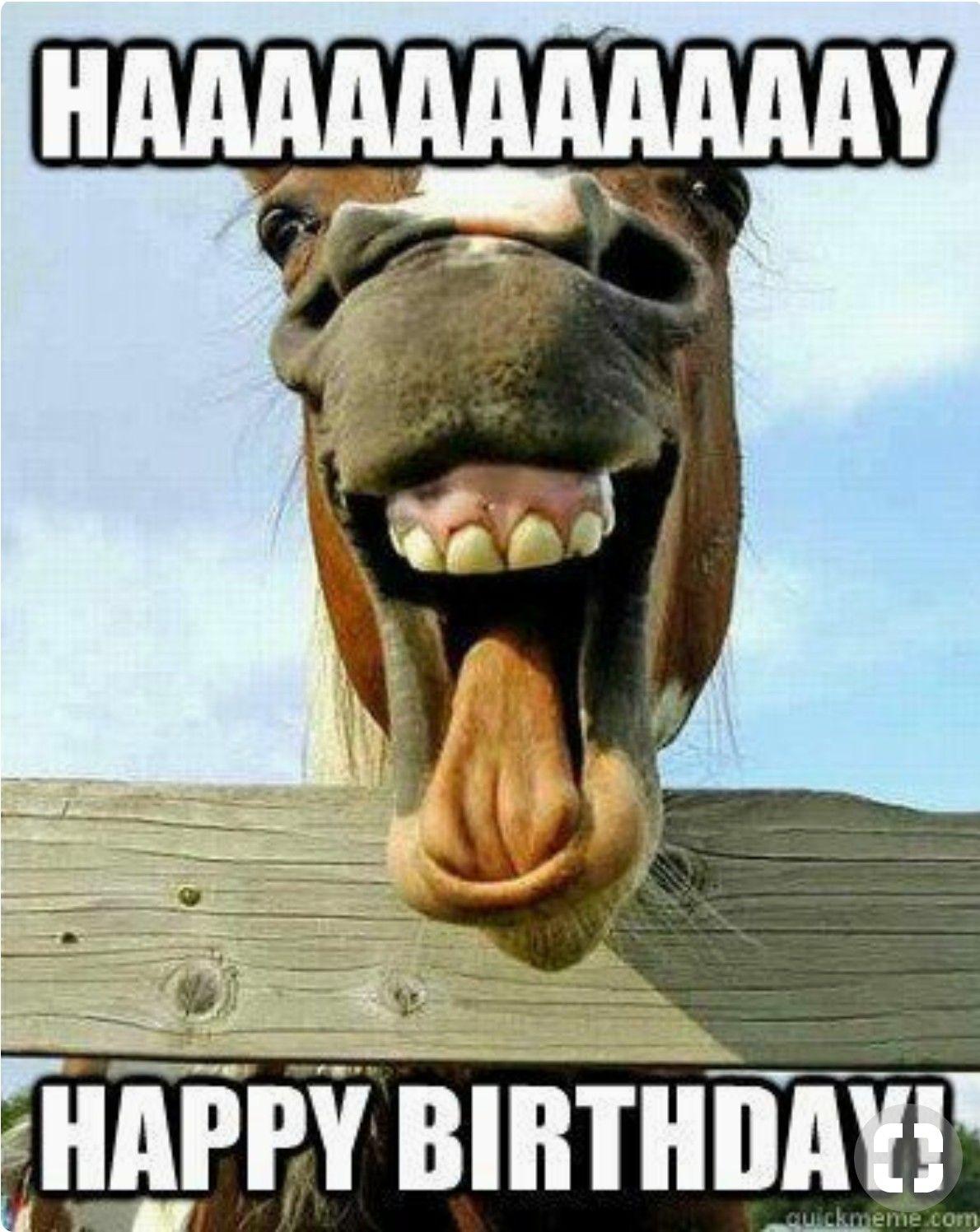 Pin By Jenny Shilling On Geburtstag Bilder Funny Happy Birthday Meme Birthday Wishes Funny Happy Birthday Funny