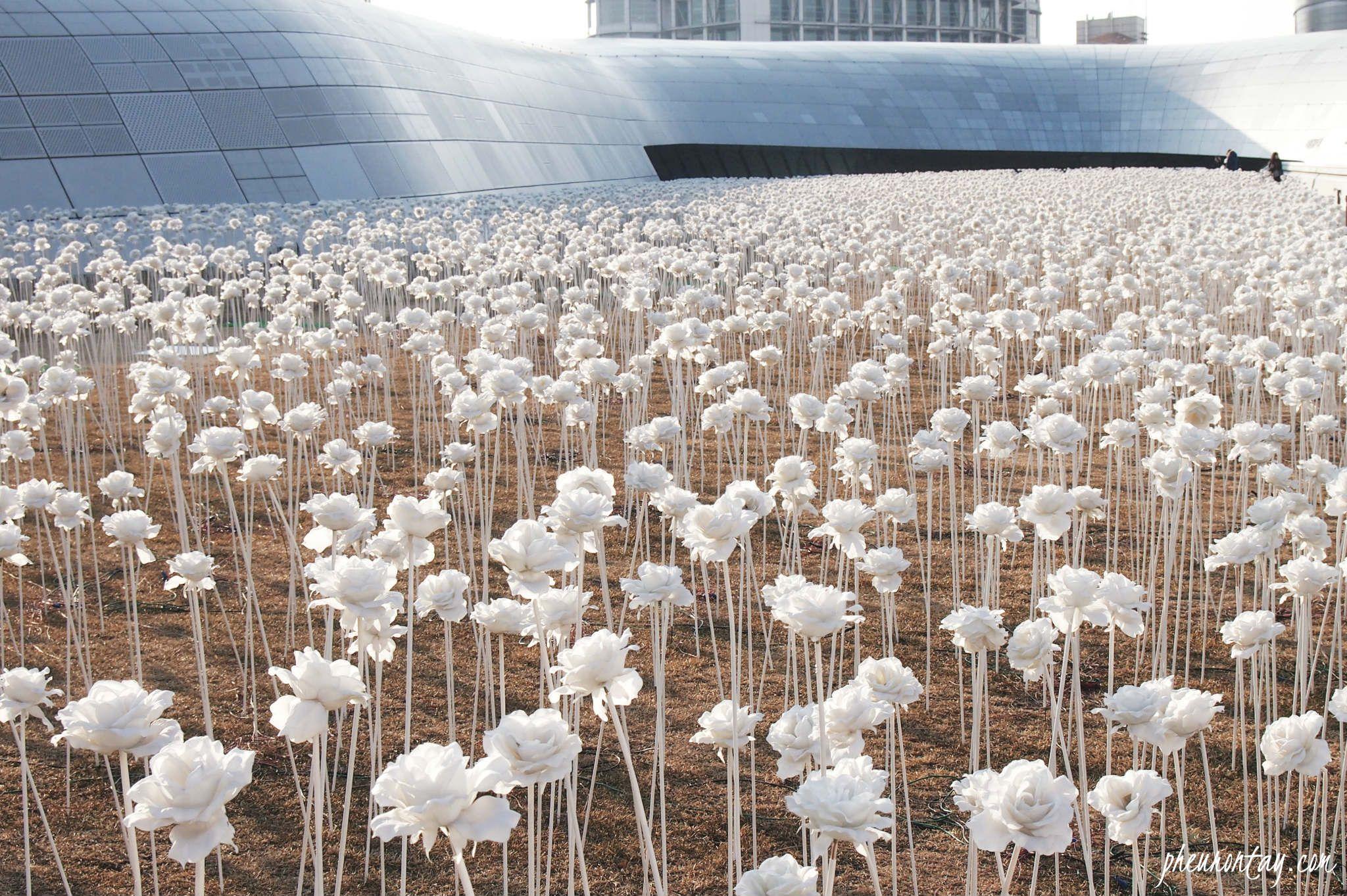 Dongdaemun Design Plaza Ddp Seoul South Korea Led Gardening Rose Garden Landscape Led Flower