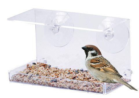 Topplisten - Vindu Fuglebrett, Se på når fuglene spiser utenfor vinduet ditt!