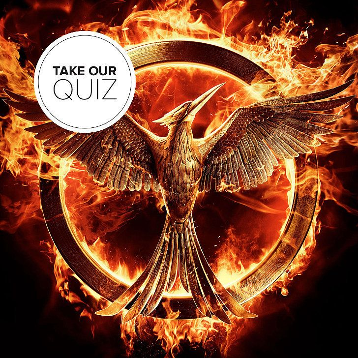 Which Mockingjay Character Are You? I got Peeta...but I'm a girl