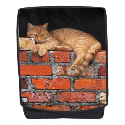 cat on brick wall backpack personalize gift idea special custom diy or cyo