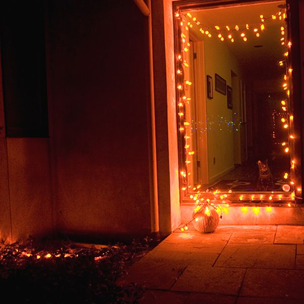 60 led pumpkin string light set 120v indoor outdoor plug in ul listed - Halloween Outdoor Lights