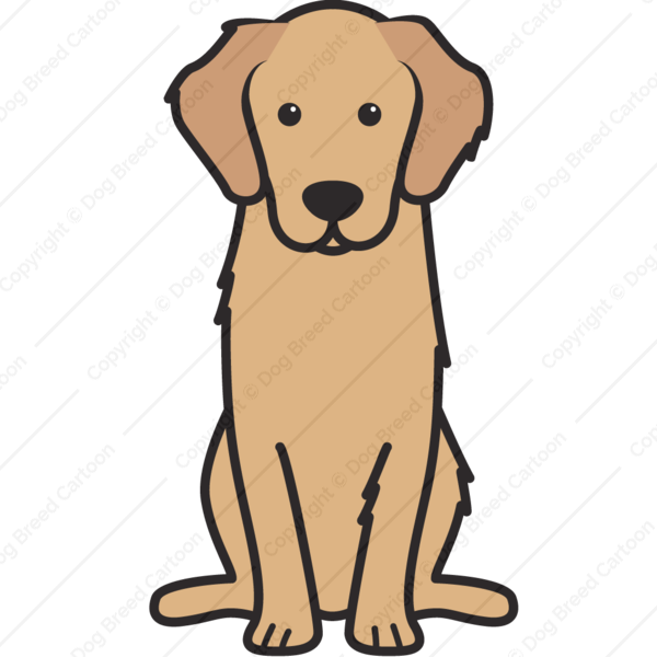 Golden Retriever Special Edition Download Cartoon Dog Golden
