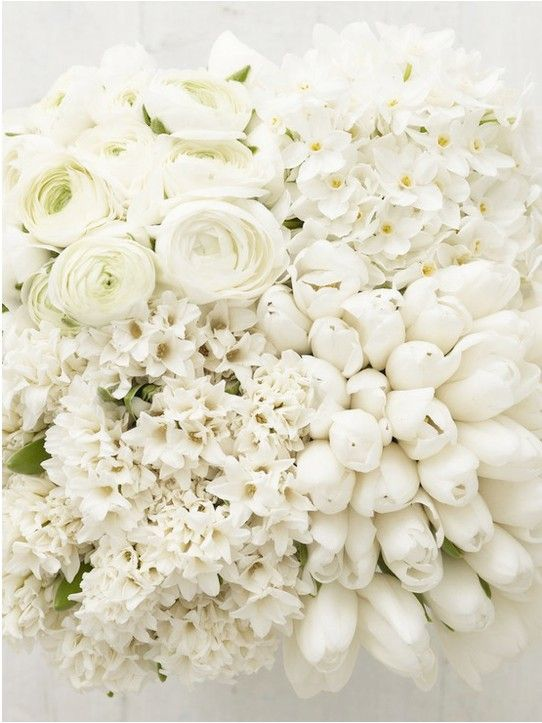 Gorgeous white flowers ranunculus hydrangea tulips hyacinth gorgeous white flowers ranunculus hydrangea tulips hyacinth mightylinksfo