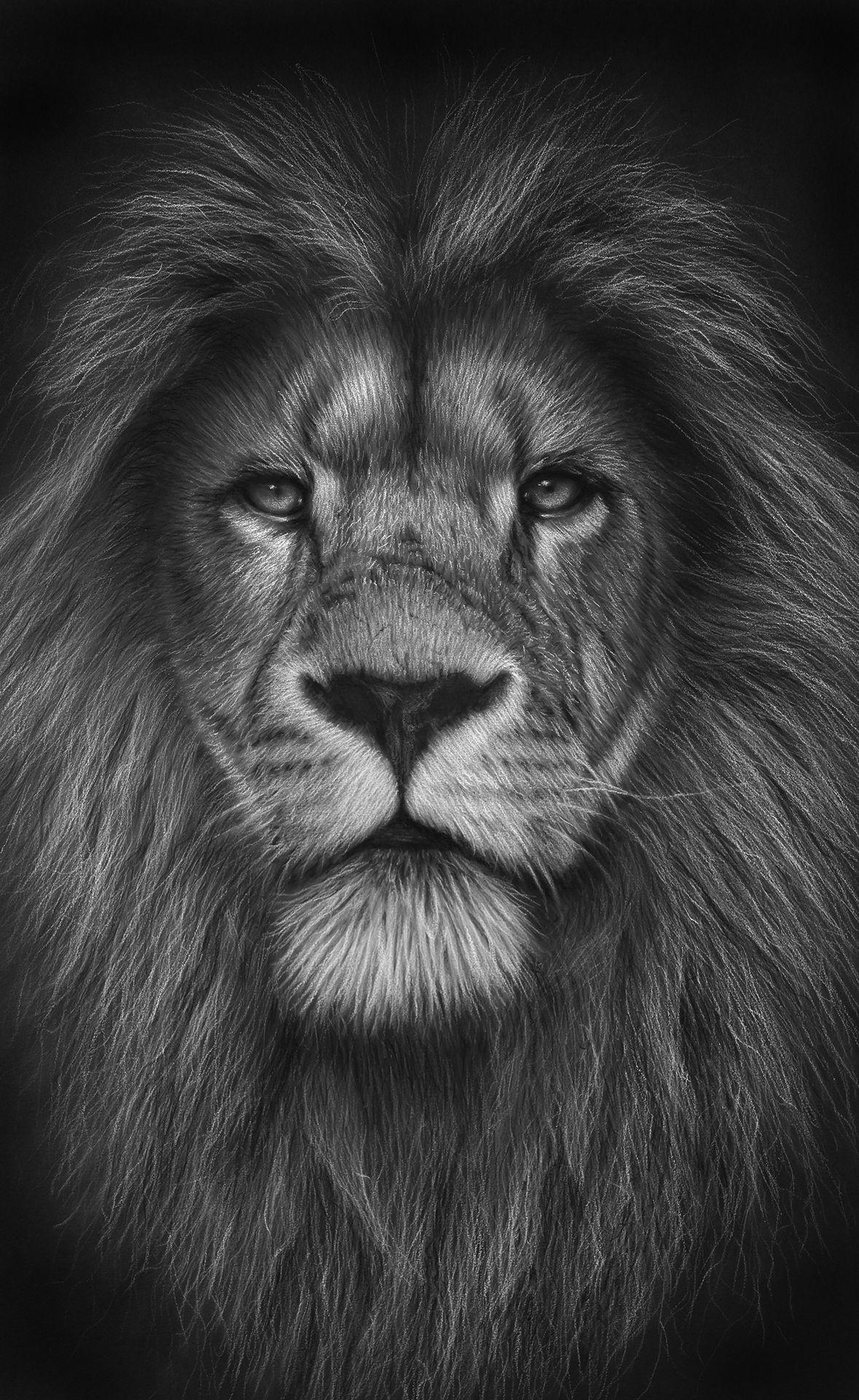 Lion heart — Colin Prestage