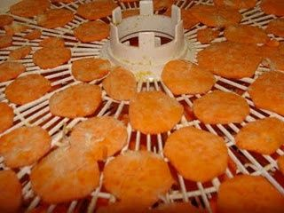 Chicken Veggie Chip Dog Treats (a mix of sweet potato, yam, beet & carrots) from http://www.kolchakpuggle.com