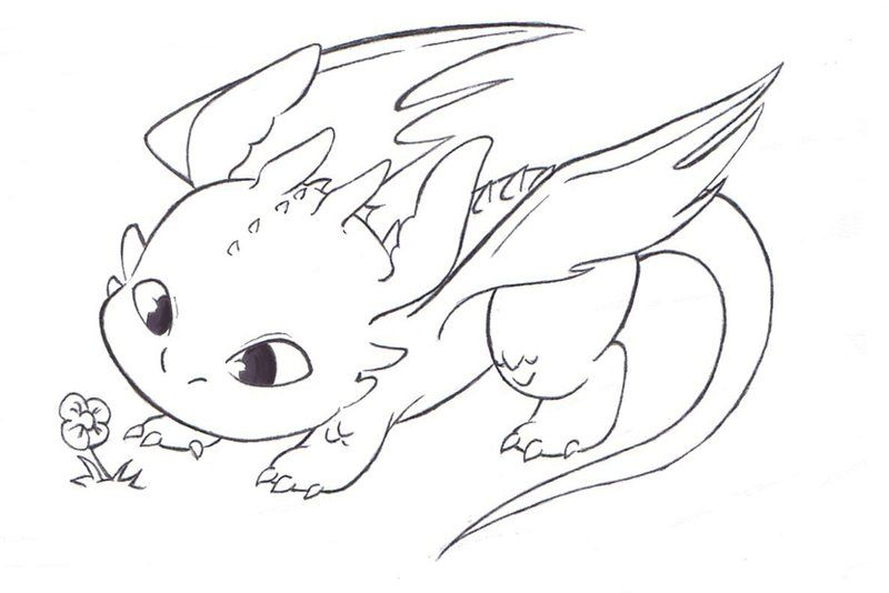 Baby Toothless Coloring Page