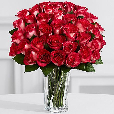 Discover the heartwarming dance of Red Velvet Roses. These one-of-a-kind roses in classic white and luscious red bring exquisite intrigue to any occasion.