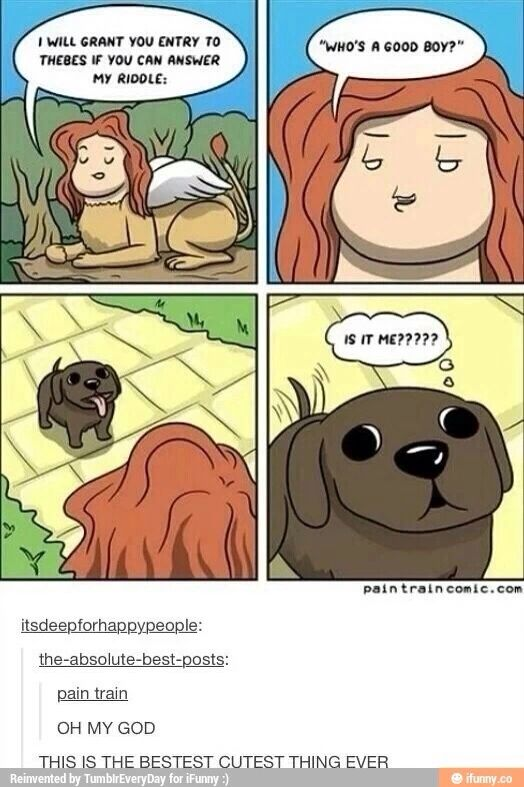 In Order To Get Into Heaven A Dog Must Answer The Riddle If The Dog Doestnt Know It Has Led A Terriner Life Funny Pictures Funny Cute Cute Comics