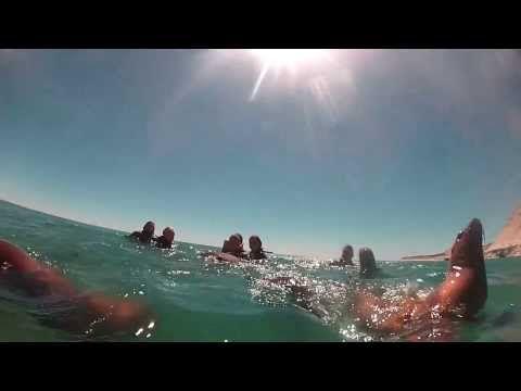 Buceo y Snorkeling con Lobos Marinos en Puerto Madryn | Blog de viajes familia viajera