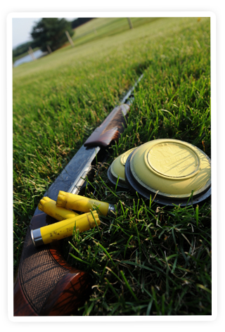 Lovely pic... Guns 3 Sporting clay shooting, Sporting
