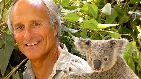 Jack Hanna's 'Into the Wild' Live | Jack hanna, Koala bear ...