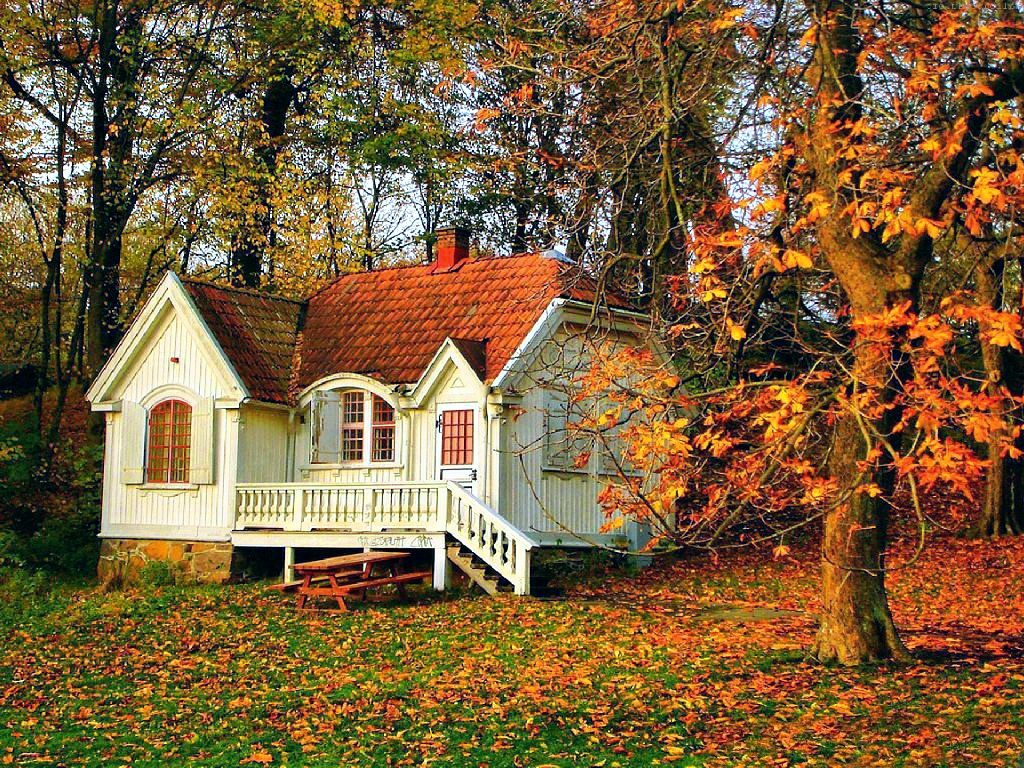 Beautiful Nature Wallpapers Hd Desktop Wallpapers Hd Free Photos Awesome Houses Healthy Life Small House Exteriors Forest House Small House Design Exterior
