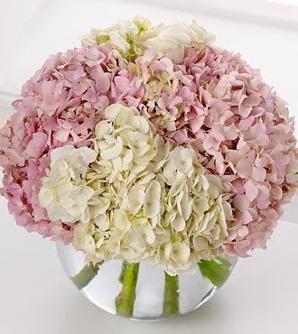 Pink Hydrangeas Bouquet Hydrangea Bouquet Pink Hydrangea Bouquet Flower Arrangements Hydrangea Bouquet