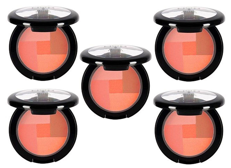 Lot Of 5 Nyx Cosmetics Mosaic Blush Powder, Love, 0.20