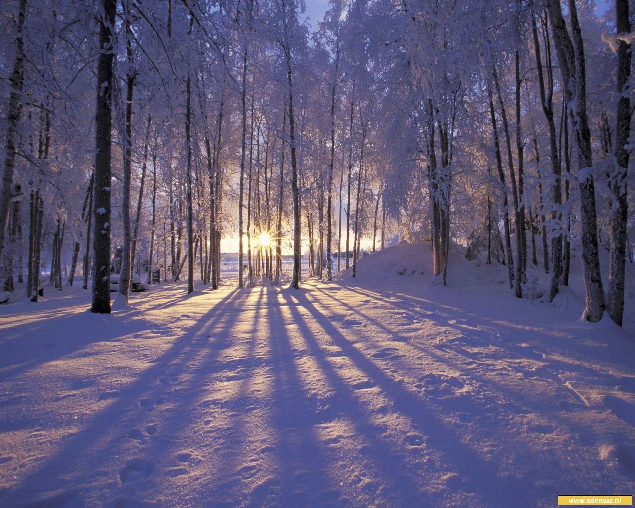 Ademuz WinterfotossneeuwfotosZoekopdrachten Verwant Aan Winter Wallpapers Wallpaper Backgrounds Snow
