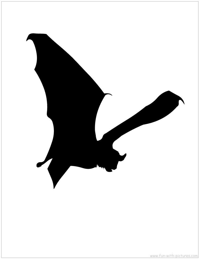 Bat Silhouette  Bats    Bat Silhouette Bats And