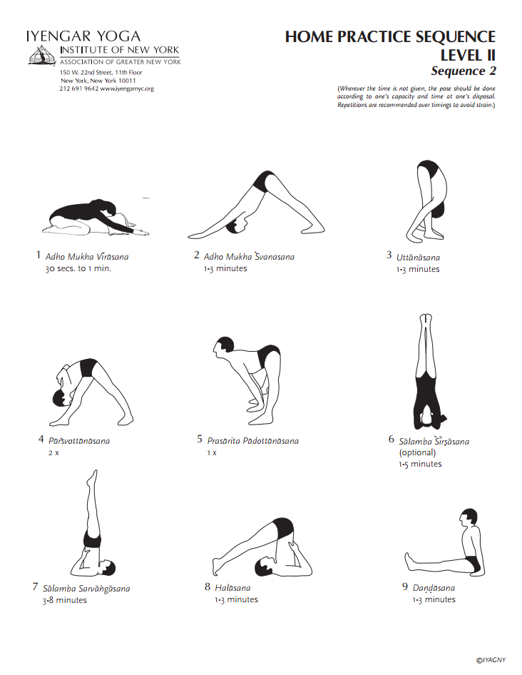 Iyengar Yoga Institute of New York Home Practice Sequence ... | 732 x 946 png 121kB