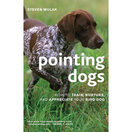 Books Bird Dog Training Aggressive Dog Dog Training