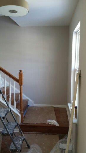 Sherwin Williams Pediment In 2019 Paint Colors Home