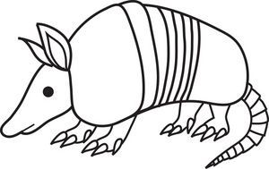 how to draw an armadillo # 64
