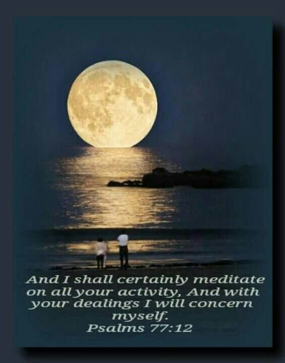 Chasing the moon • Linda JW
