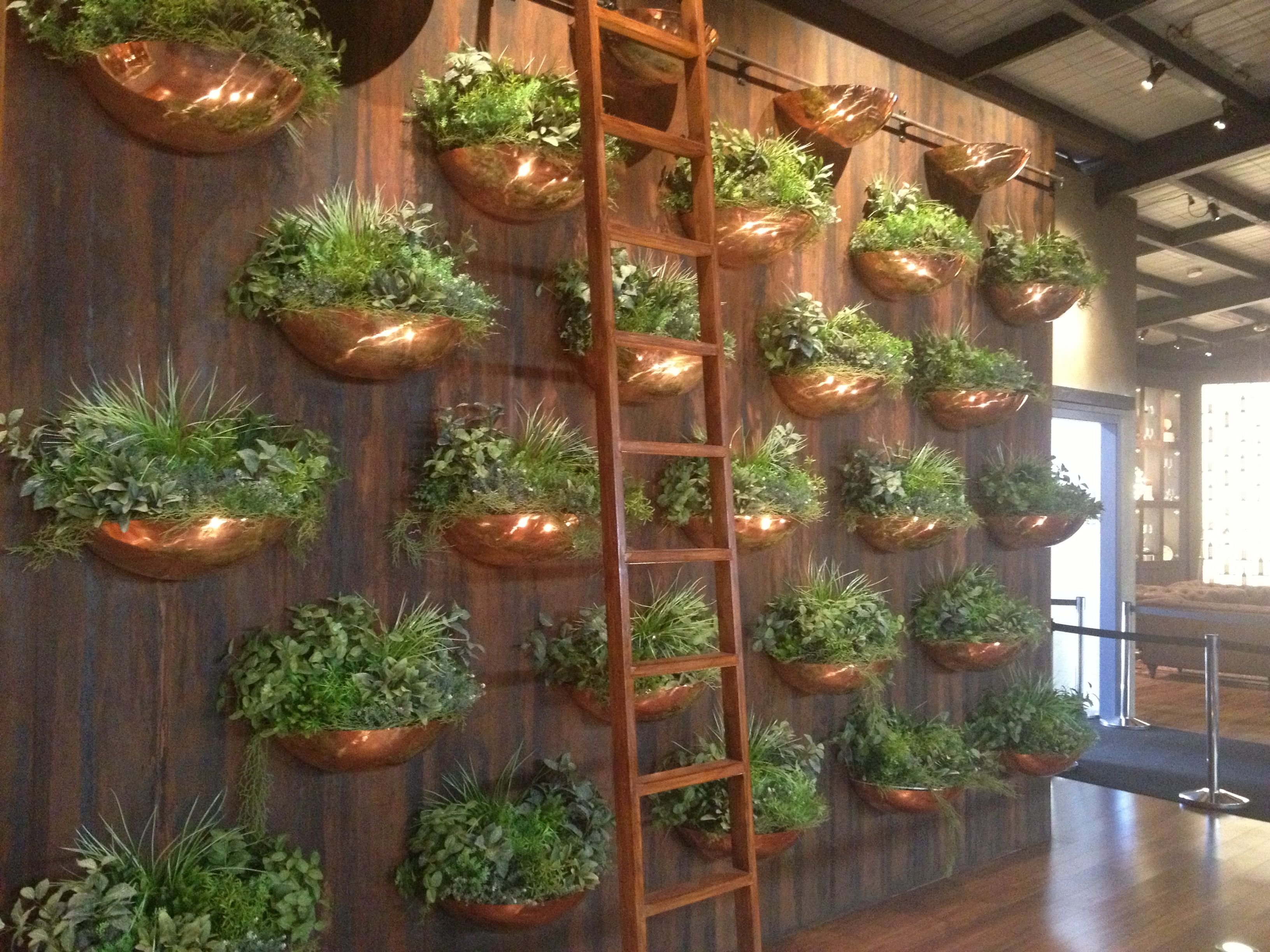 Brass herb pot wall provence pinterest edible Indoor living wall herb garden