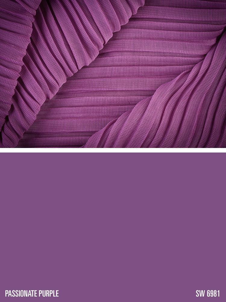 Sherwin Williams Passionate Purple Sw 6981 Colorinspiration Theme Board Pinterest