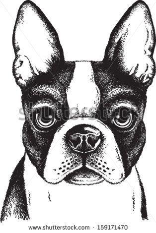 perros blanco y negro vectorizadas
