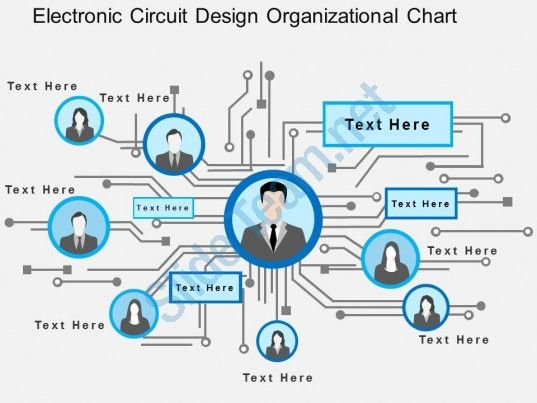 Awesome Management Slides showing Electronic Circuit Design - company organization chart